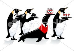 Pinguin Geburtstag Stock Photos