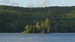 Sunny island with loons in the water. Eagle Lake, Haliburton, Canada. Stock Footage