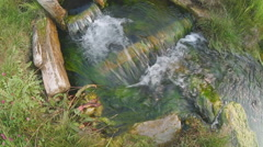 Up view of creak flowing in green fresh grass Stock Footage