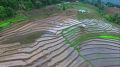 Rice fields on terraced of Pa Pong Pieng, Mae Chaem, Chiang Mai, Thailand Stock Footage