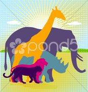 Afrika - Tierwelt Stock Photos