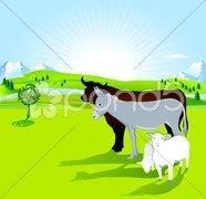 Esel, Ochse und Schaf Stock Photos