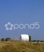 Landwirtschaft Sommer Ernte Stock Photos
