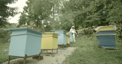 4K newbeekeeper home honeycombs and passes hives Stock Footage
