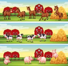 Farm animals in the farmyard Piirros