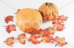 Herbstliche Dekoration Stock Photos