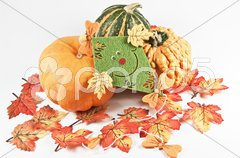 Herbstdekoration Stock Photos