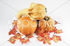 Dekoration mit Kürbis und Blättern Stock Photos
