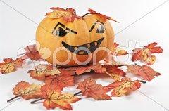 Kürbis und Blätter Stock Photos