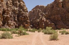Enter to Barrah Canyon. Wadi Rum (Valley of the Moon), Jordan. UNESCO World H Stock Photos