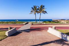 Two Palm Trees and Paving Leading into Durban Beach Stock Photos