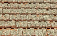 Terracotta Roof Tiles Covered in Lichen Fungus Stock Photos
