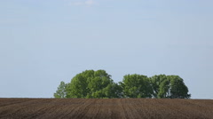 Plowed land on background bushes and blue sky Stock Footage