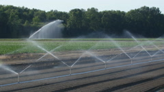 Small sprinklers with large sprinkler in background. Ontario, Canada. Stock Footage