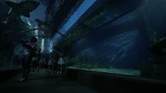 People in the water tunnel of oceanarium. Bangkok, Thailand Stock Footage