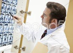 Chiropractor Examines CT Scan Stock Photos