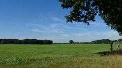Farmland in Dutch landscape Stock Footage