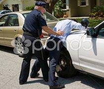 Spread Eagle on Police Car Stock Photos
