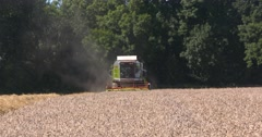 Combine harvester in field - on camera Stock Footage