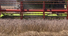 Combine harvester in field - close up cutterbar - on camera Stock Footage