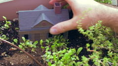 Fairy garden faerie small miniature mini Stock Footage