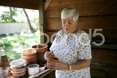 In The Potting Shed Stock Photos