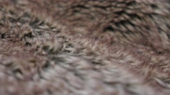 Fake fur fabric texture slow tilting close-up 4K 2160p 30fps UltraHD footage Stock Footage