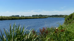 On the banks of the river IJssel Stock Footage