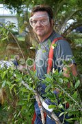 Worker Hauling Branches 2 Stock Photos