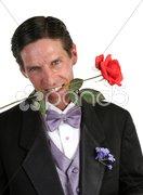 Tux & Rose Stock Photos