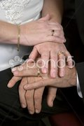 Young Wedding Hands Stock Photos