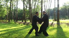 Training in the park. Workout. Two men practicing elements of qigong. 4K Stock Footage