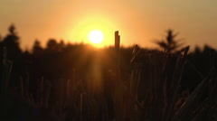 Harvested Field At Sunset With Harvested Hay and Ploughed Field Stock Footage
