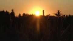 Harvested Field At Sunset With Harvested Hay and Ploughed Field ploughed field, Stock Footage