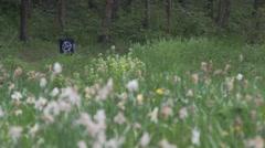 Anarchy graffiti on bin in flowery meadow park sunny day uk Stock Footage