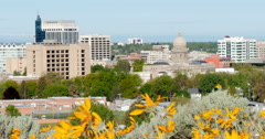 Flower in front of city skyline, Boise, Idaho, United States Stock Footage