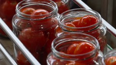 Automatic Line for Processing and Canning Vegetables . Preserving Tomatoes 6 Stock Footage