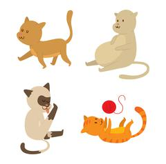Cartoon vector cat character Stock Illustration