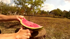 Cutting piece of watermelon on a stump in the garden in front of the sun Stock Footage