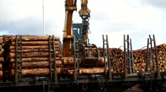 Crane loading Traine with timber Stock Footage