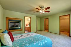 Large and simple green bedroom interior with walk through closet, wall mounte Stock Photos