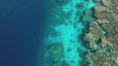 Aerial view of coral reef - Shaab Rumi, Precontinent, Sudan Stock Footage