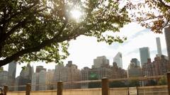 City skyline scenery. sun shining through tree Stock Footage