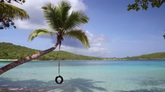 Panning video of palm trees and tropical beach at Gibney beach, St John Stock Footage