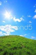 Green grass hills under midday sun Stock Photos