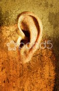 Weird Ear Stock Photos