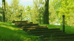 Staircase in park at spring. Steps in park at green forest Stock Footage