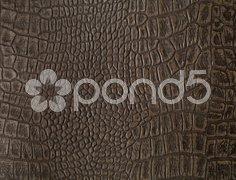 Faux alligator skin Stock Photos