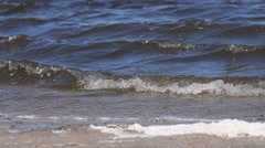 Waves of the polluted water pleskatsya the coast Stock Footage