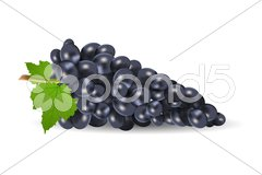 Grapes with leaf Stock Illustration